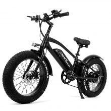 CMACEWHEEL T 20 Electric Bike, 48 V 750 W Adult Electric Mountain Bike, 2 Batteries Czech Republic Warehouse